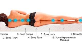 Какой матрас лучше: ортопедический или анатомический