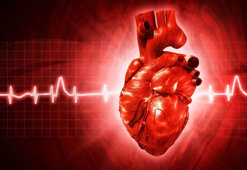 Рубец на сердце: причины возникновения и методы лечения